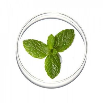 Lancome Lancôme Hydra Zen Crema De Día SPF15 Hidratante Calmante Anti-Estrés