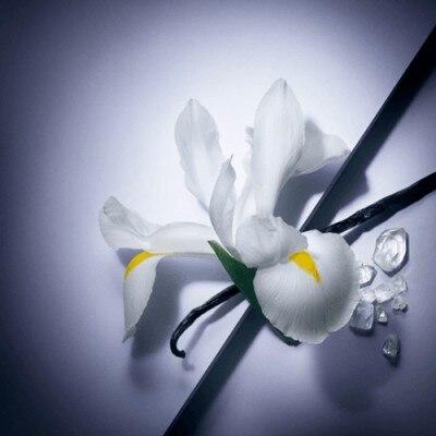 Lancome Lancôme La vie est belle Eau de Parfum