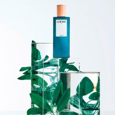 Loewe Loewe 7 Cobalt Eau de Parfum