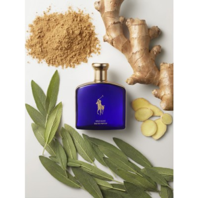 Ralph Lauren Ralph Lauren Polo Blue Gold Blend Eau de Parfum
