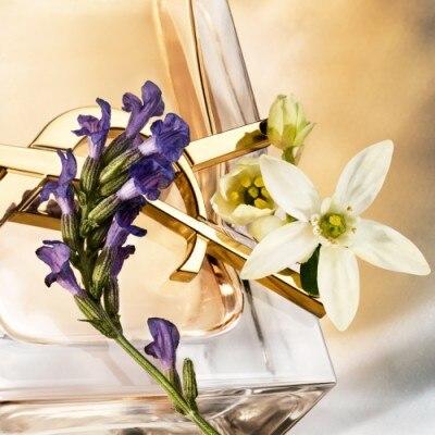YSL Libre Eau de Parfum