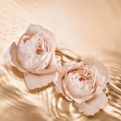 Jimmy Choo Jimmy Choo Tempting Rose Eau de Parfum