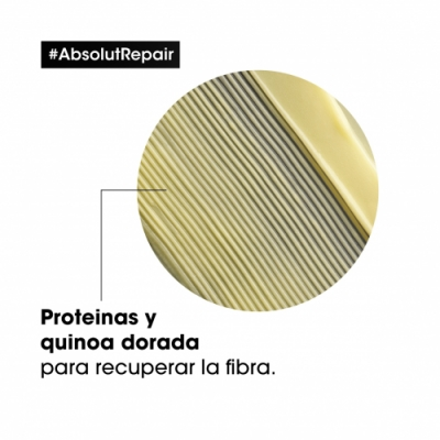 L'Oréal Professionnel Acondicionador Absolut Gold