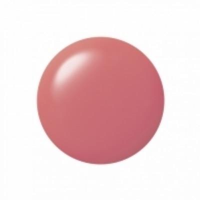 Decorte Decorte Tint Lip Gloss