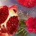 GUERLAIN Aqua Allegoria Granada Salvia Eau de Toilette