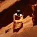 HERMÈS Terre d'Hermès, Perfume