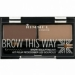 002, Mild Brown Eyebrow Kit