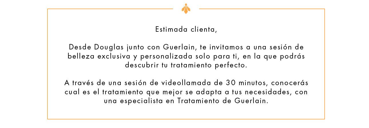 Guerlain E-Beauty Services
