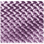 Cyber lilac