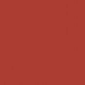301,Tangerine
